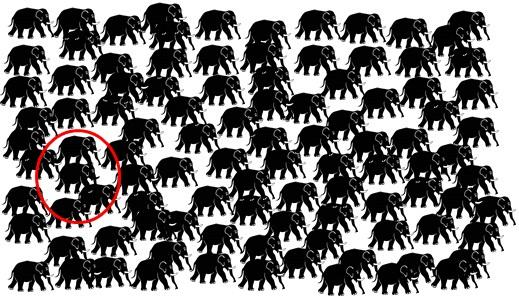 elefántok4megfejtes
