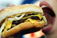 b_200_200_16777215_00___images_watermarks_a_a_transzzsir-hamburger-illusztracio