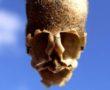 A tátika koponya alakú magháza (képek)