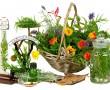Gyógyító természet kincsestára minden évszakra