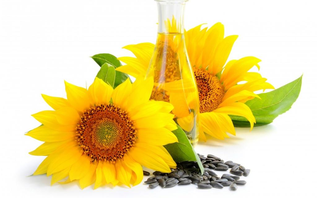sunfloweroil-1389819667