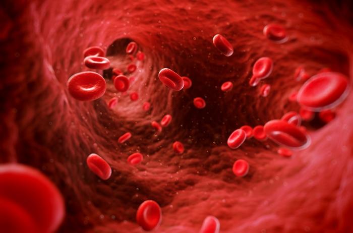 3d rendered illustration of human blood cells