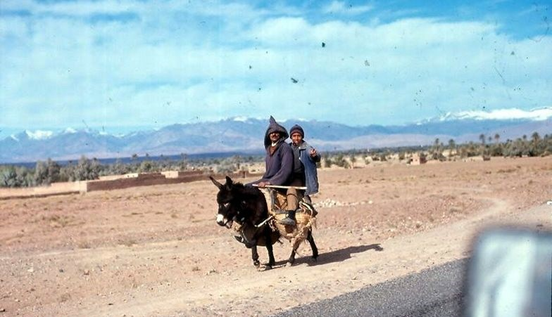 donkey-ride-errachidia-morocco+1152_12868287473-tpfil02aw-12147