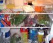 Életveszélyes hűtőben tartani a krumplit! Ezt neked is tudnod kell!