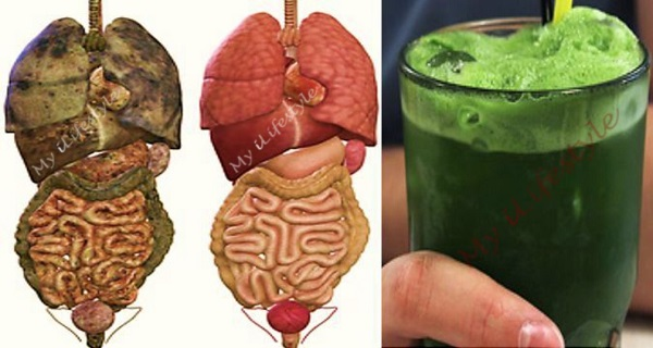 Super-Green-Detox-Drink-that-Will-Remove-All-Toxins-and-Fat-from-Your-Body