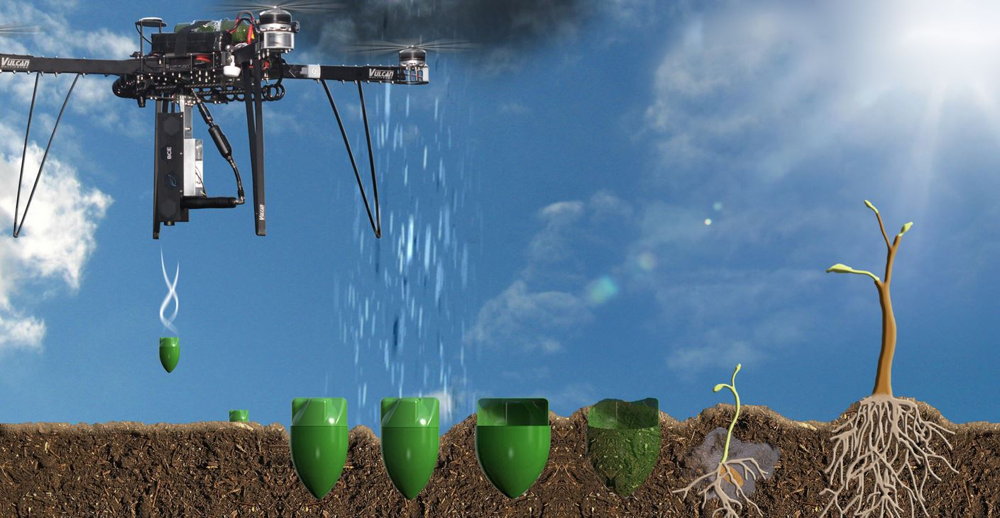 sistema_plantacion