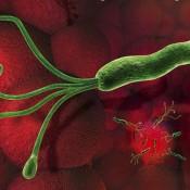 helicobacter_pylori_2_580x