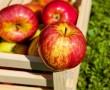 """Egy nagyon egyszerű """"karcsúsító"""" egészségtipp Almával!"""