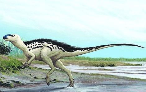 burianosaurus_augustai