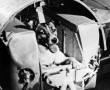 A szovjetek tudták, hogy Lajka kutya nem éli túl az űrutazást :(