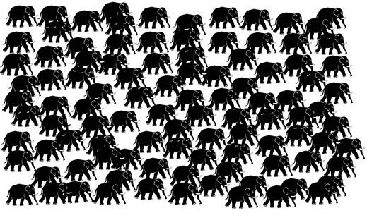 elefántok4