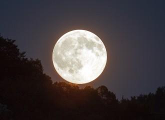 full-moon-1775764