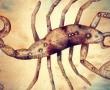 Van Skorpió jegyű barátod? Ha nincs, ezért lenne fontos közel kerülni egyhez