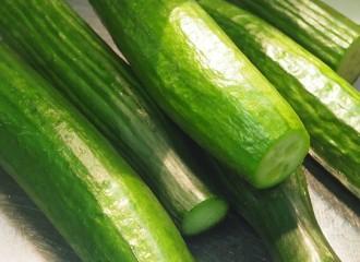 cucumber-cucumbers-958471