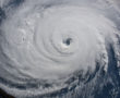 Ezt még a hatóságok sem látták előre! A Florence trópusi vihar felélesztett milliónyi, óriás vérszívót!