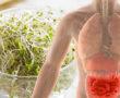 Érdemes fogyasztani a nyers csírát! Ezért egészséges!