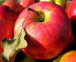4 dolog, amiért érdemes almát fogyasztani