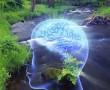 A betegségek lelki, mentális és karmikus okai