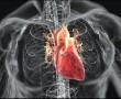 A hirtelen szívhalál megelőzhető