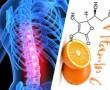 Segíthet a C-vitamin? A C-vitamin hiány és a porckorong kopás kapcsolata