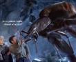 Itt egy vegyszermentes megoldás, hogy távol tartsd a pókokat!