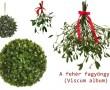 Tegyél te is az ajtódra, a legendás karácsonyi szerencsehozó gyógynövényből!