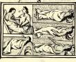 Az emberiség történelmének egyik legpusztítóbb járványa végzett a legendás birodalommal