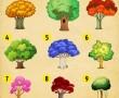 Válassz egy fát, hogy megtudd, milyen változásokra kell számítanod az életedben hamarosan!