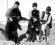 Láttad a Kutyahideg című filmet? Ez történt valójában, olvasd el a hős kutyák igaz történetét!